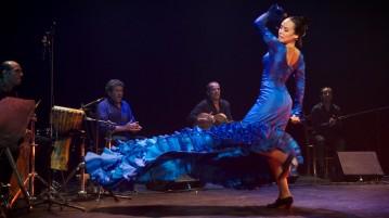 Off Avignon 2014 : spectacle Flamenco Vivo - Lo Esencial de Luis de la Carrasca